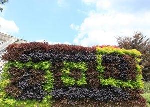 Green wall in a geometric pattern.
