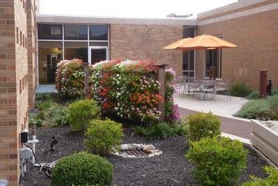 Free-standing flowering vertical garden walls in courtyard.