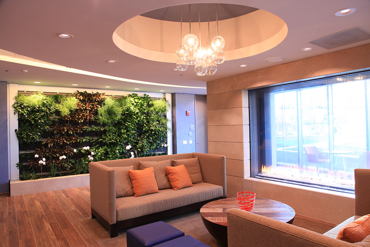 Living walls create an inviting space.