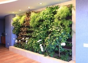 Living wall with mixed plants.