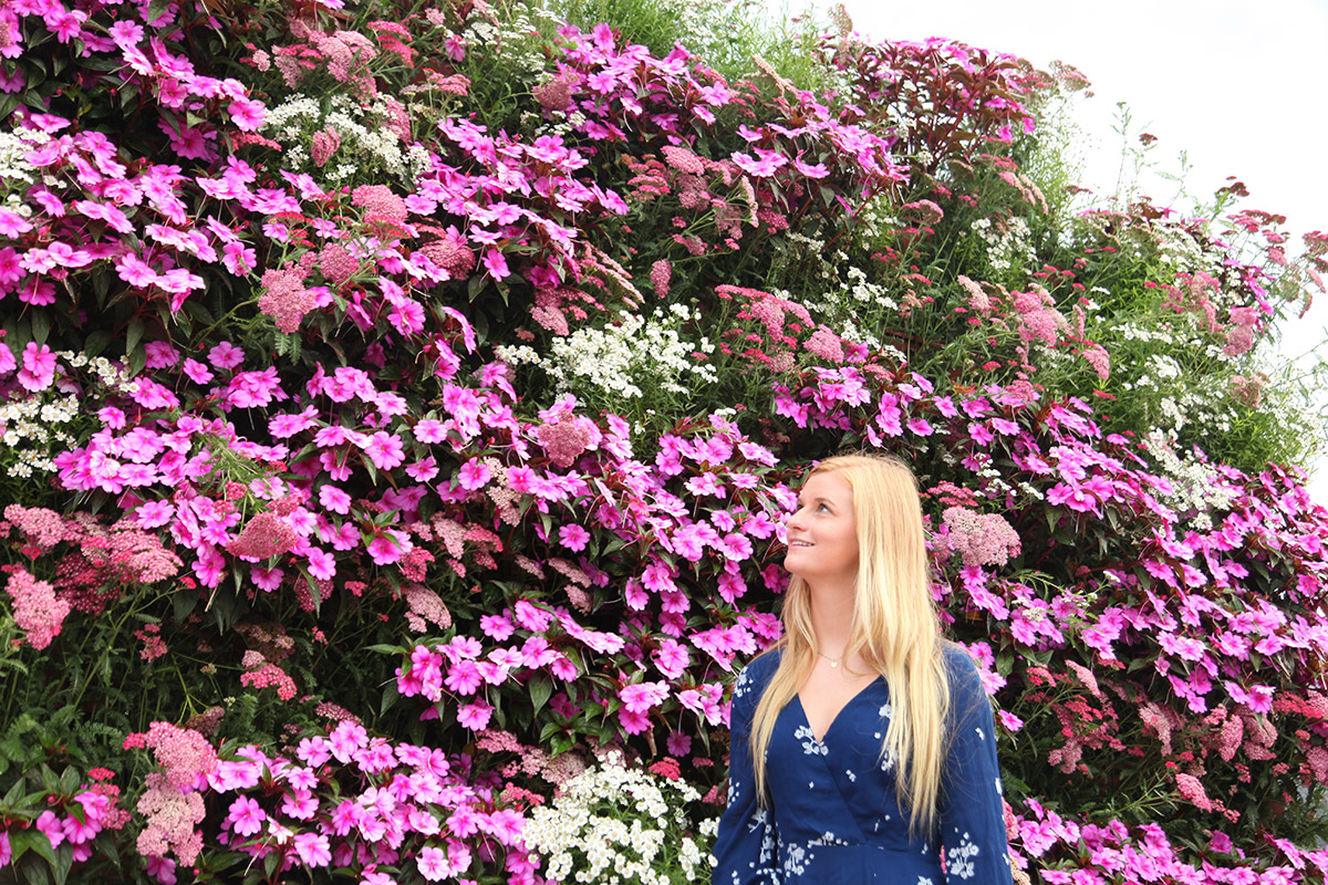 Woman appreciating a living wall filled with colorful, pink impatiens.