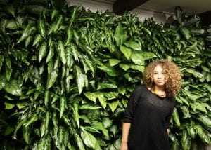 Grow lush, healthy, indoor jungles with the LiveWall Indoor system.