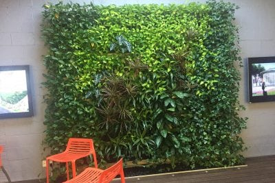 The MBTW group is a landscape architecture firm in Toronto, Ontario, which has installed and maintains their own LiveWall indoor green wall.