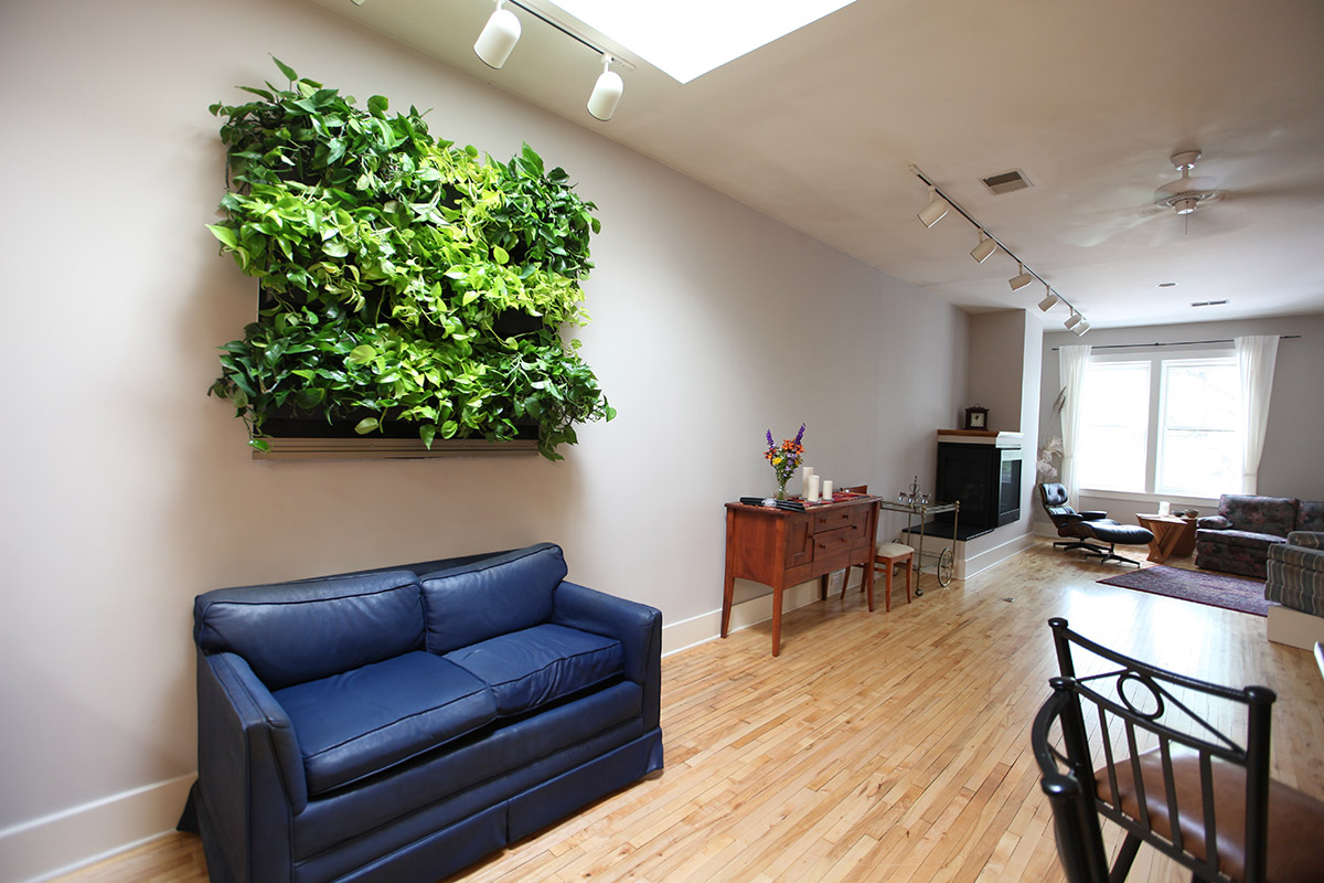 Living walls can be used to bring nature indoors.