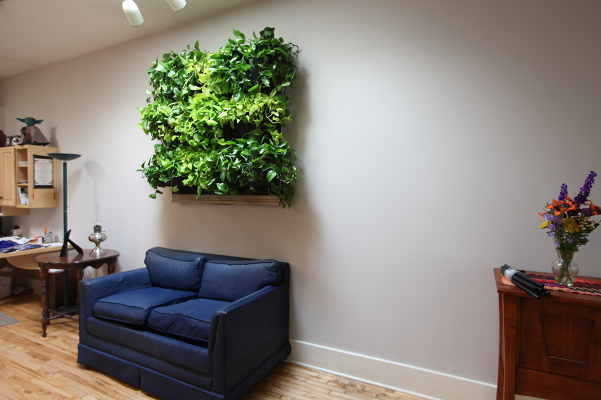 This vertical garden is a living masterpiece in a home.