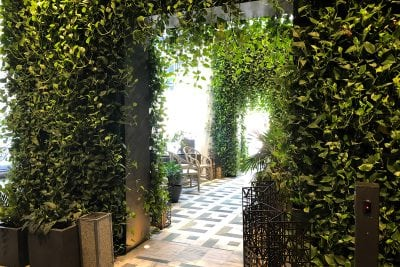 SLS LUX condos welcome residents and visitors with green wall entryways.