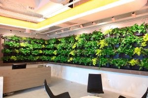 Smith Group JJR Reception Area Wall - Recently Trimmed