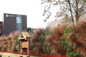 Sovengard Restaurant's Vertical Garden