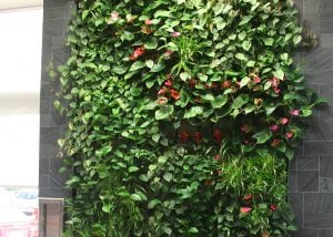 Living walls in dealerships make it easier for customers to wait.