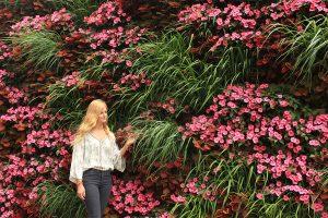 Non-Rhythmic SunPatiens and Lemon Grass Vertical Garden
