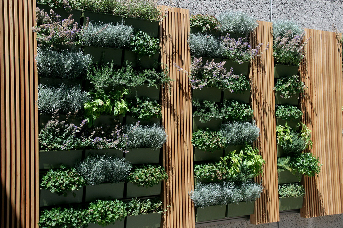 The installation of a green wall breaks up all the concrete.