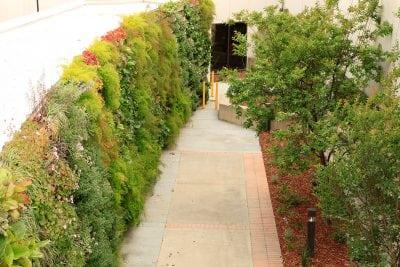 VA hospitals introduces a green wall to bring natural views.