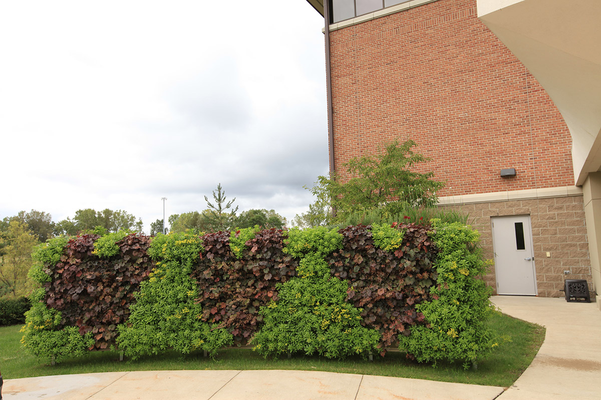 A living wall is used to showcase hearts.