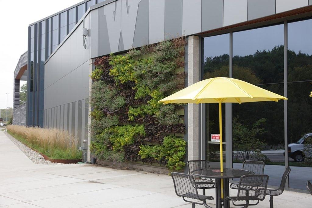 Western Michigan University's Living Wall