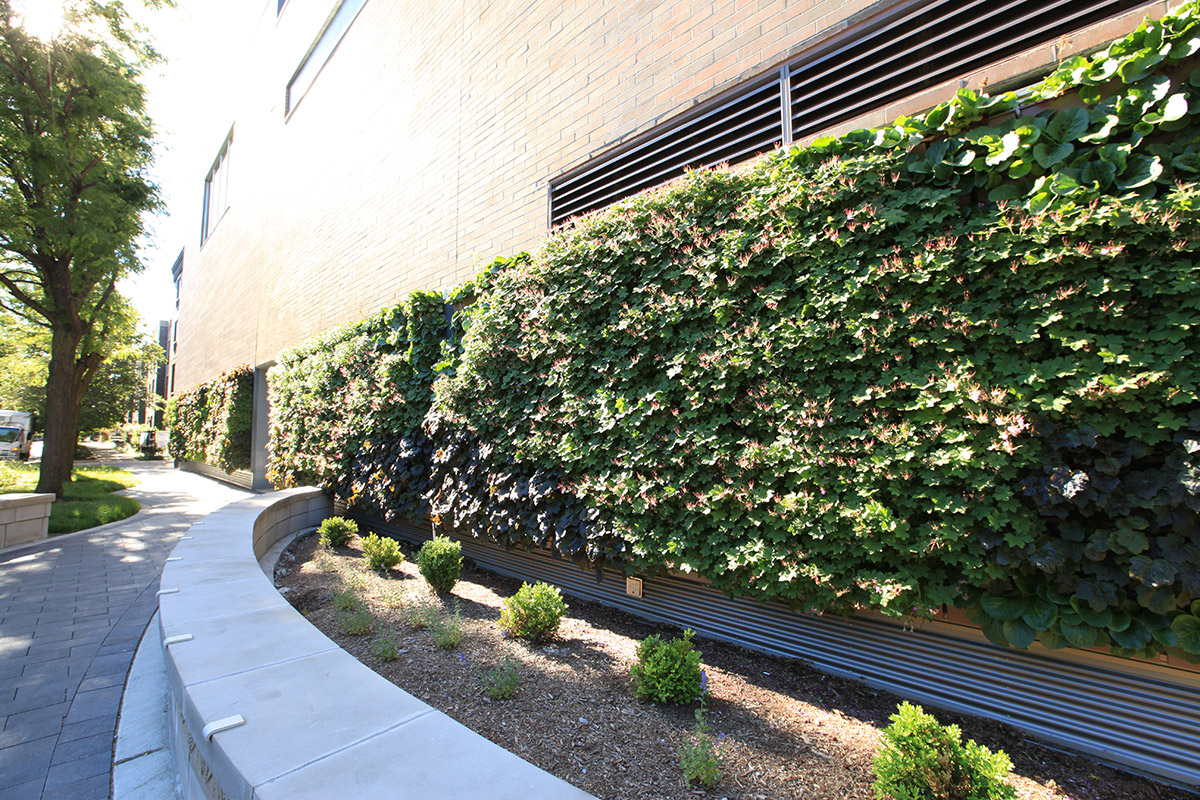 Whole Foods Lakeview Chicago Store features several large Green Walls