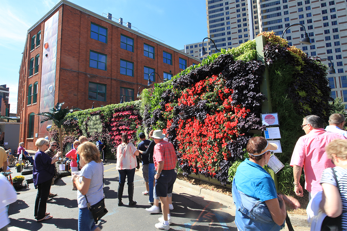 People reflecting on the beauty of the living wall at ArtPrize.