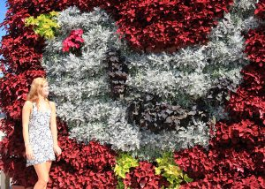 Living wall planted in a bird-shaped pattern using annual plants.