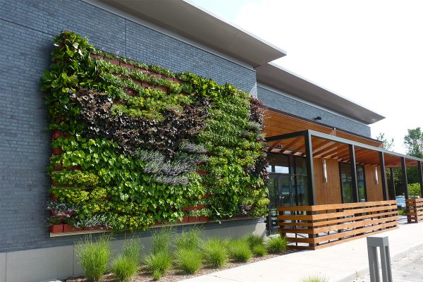 Breton Village Shopping Center in Grand Rapids, Michigan, included an outdoor living wall in building renovations.