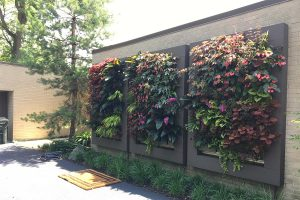 Chicago Area Residential Outdoor Living Wall Trio by Chalet Floral