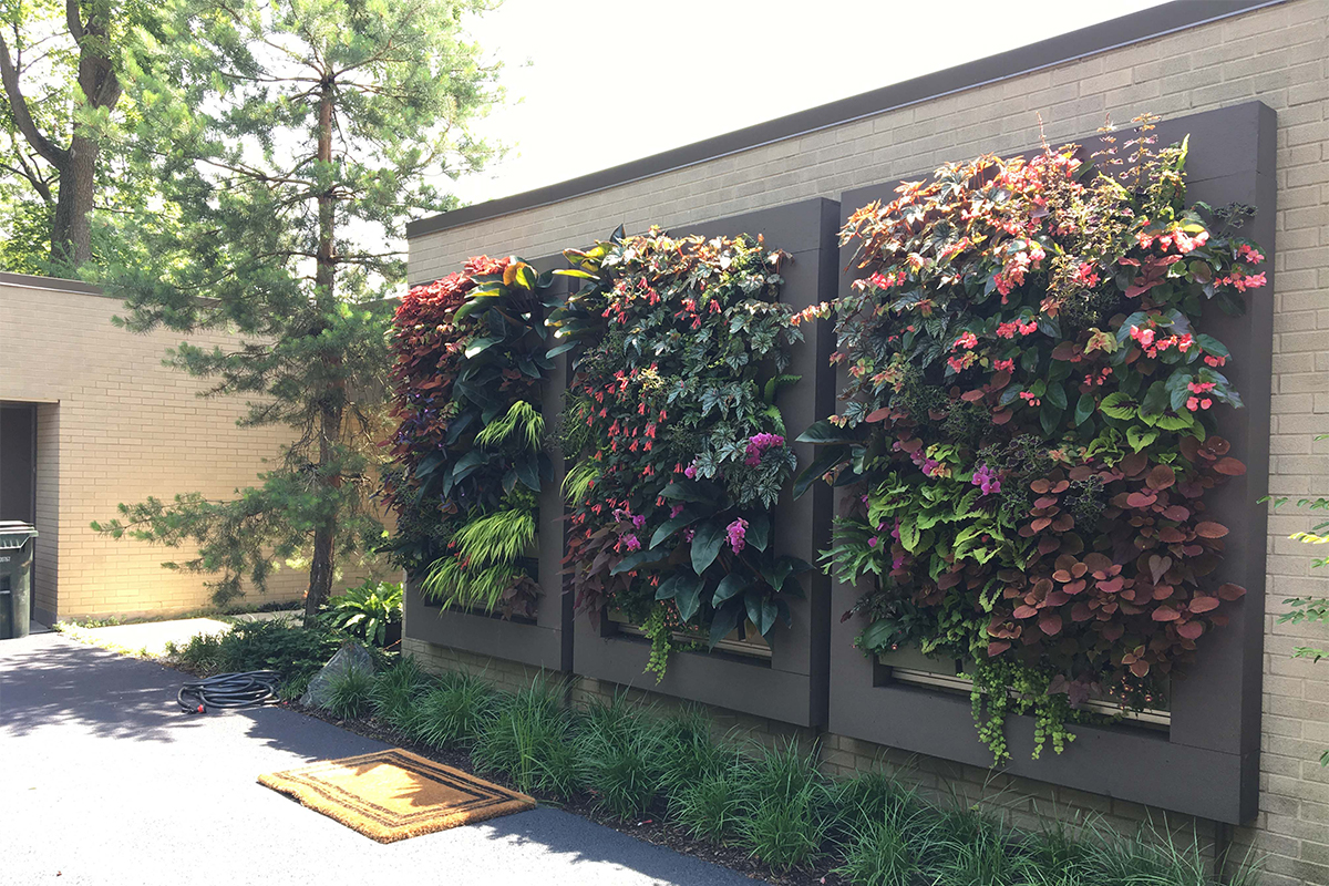 Chicago Area Residential Outdoor Living Wall Trio By Chalet Floral Livewall Green Wall System