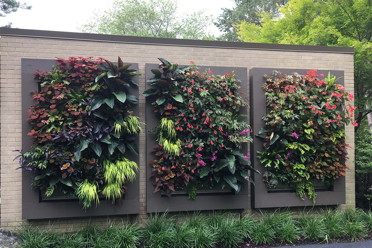 Chalet Floral installed, planted and maintains these beautiful green walls at a Chicago-area home.