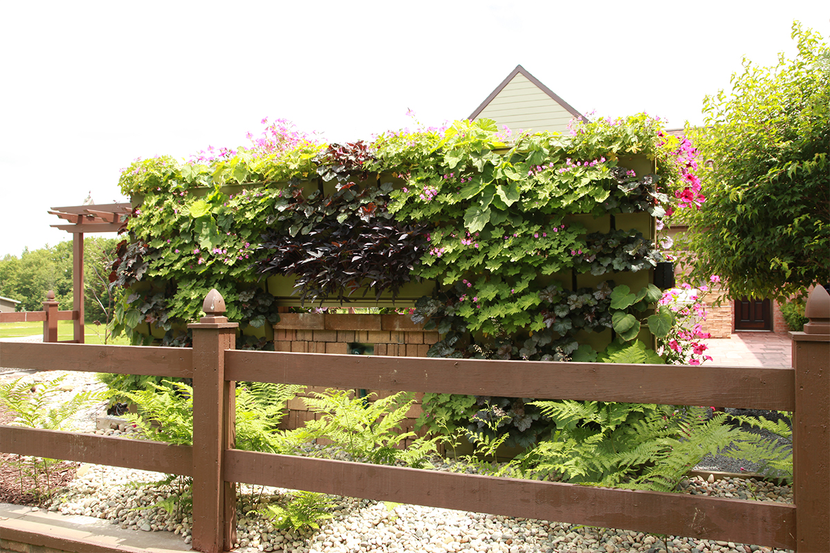 Double sided living wall. This side has perennials, opposite side planted with annuals and includes waterfall feature.