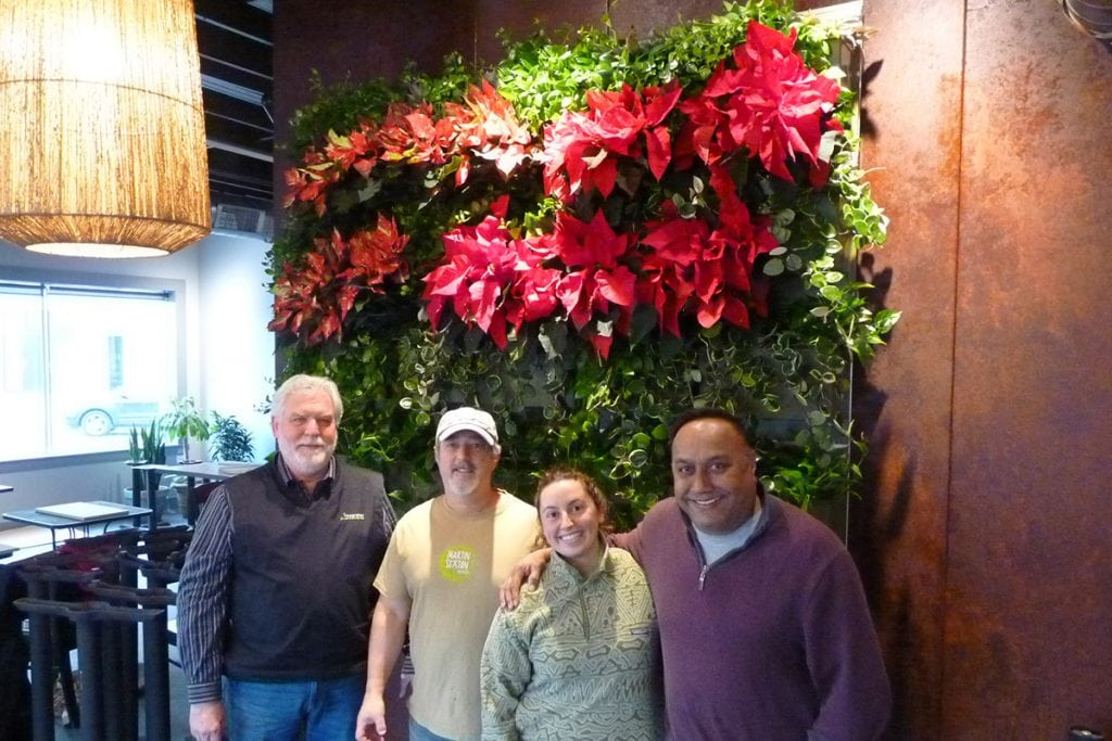 East West Brewing Company Indoor Living Wall, at Time of Installation