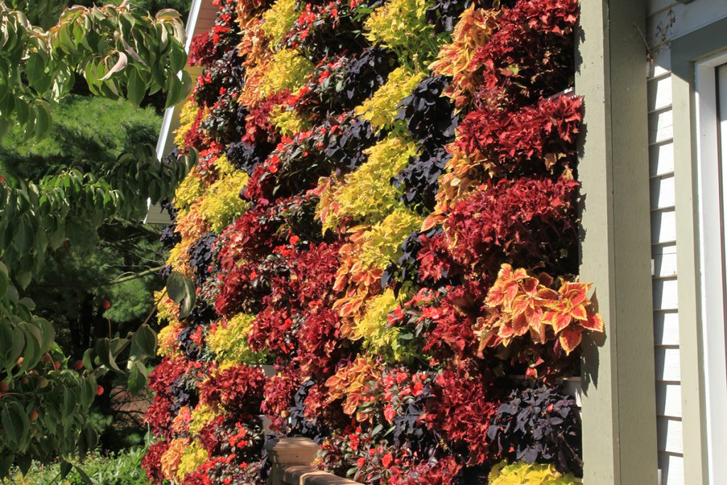 Garage Living Wall with Fall Colors