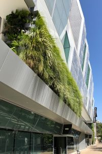 Vertical garden at Golden 1 Center Arena in Sacramento, California at Golden 1 Center Arena in Sacramento, California.