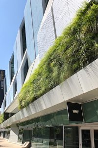 Living wall at Golden 1 Center Arena in Sacramento, California.