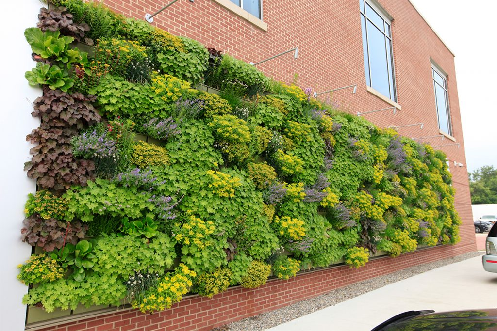 Grand Rapids Downtown Market Perennial Green Wall