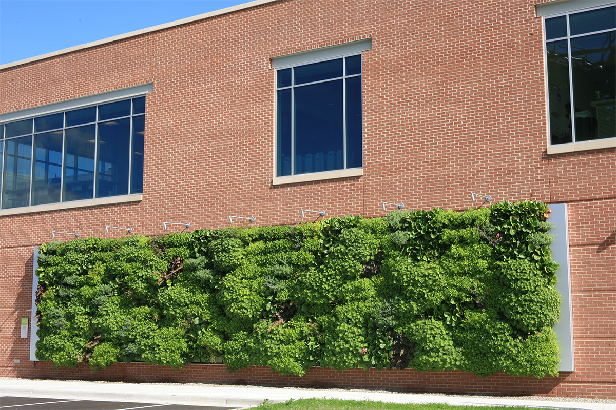The Downtown Market's largest section of living walls.
