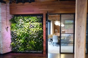 Greenleaf Trust Indoor Living Wall with Tropical Plants