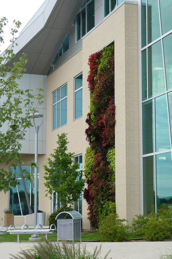 Green Wall on the culinary arts building at Kalamazoo Valley Community College.