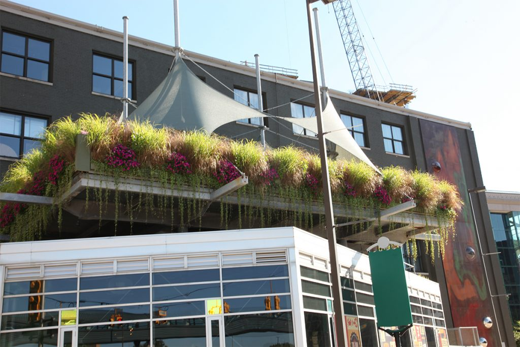 The B.O.B. Sky Deck Living Walls