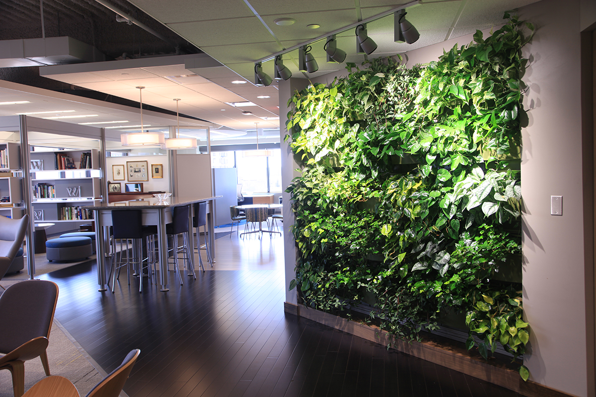 Indoor living wall at Wege Foundation office in Grand Rapids, Michigan.