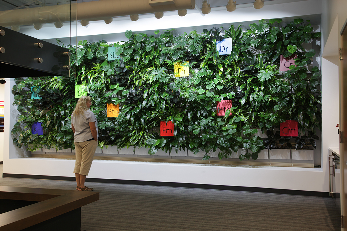Applied Imaging welcomes visitors and staff to its corporate office with a lush, green planted wall.