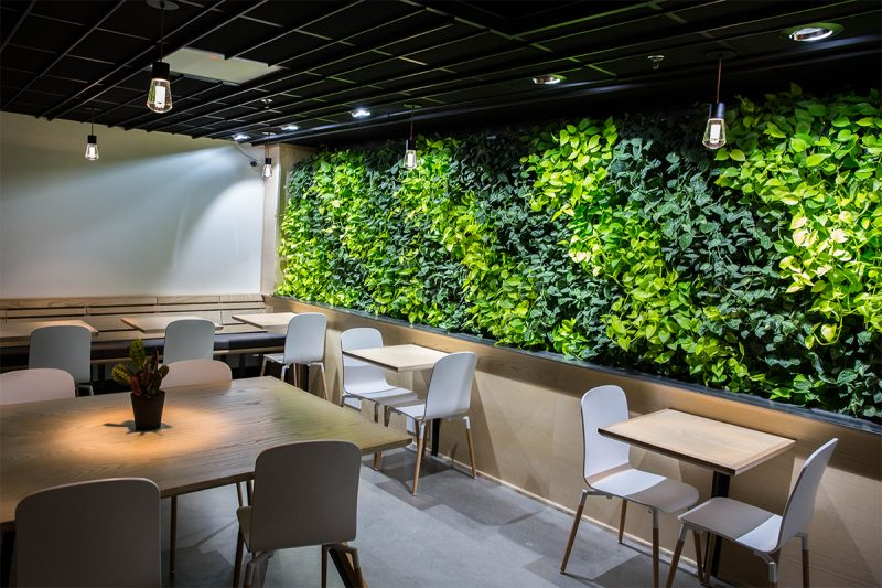 People surrounded by green wall plants experience improved mental and physical health, feel more content and relaxed, and are more creative.