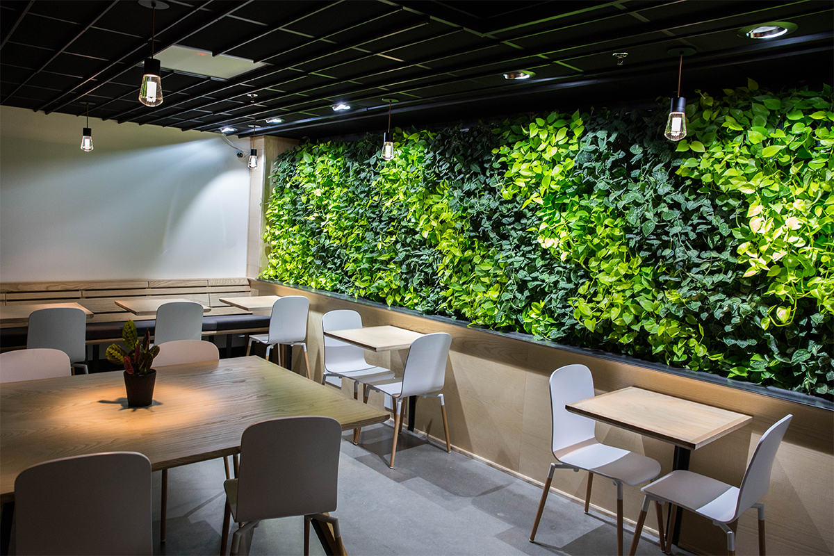Coava Coffee's Indoor Living Wall in Portland Oregon copyright Acheff Images