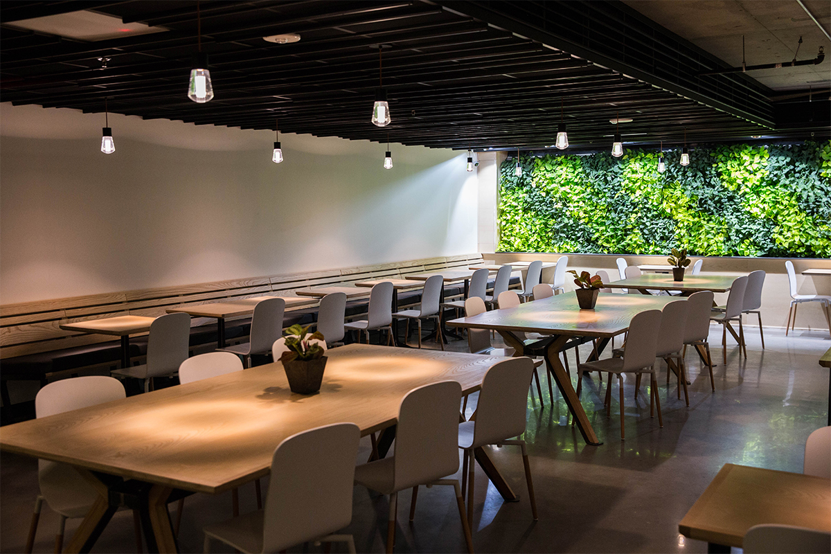 vertical garden at cova coffee in portland oregon