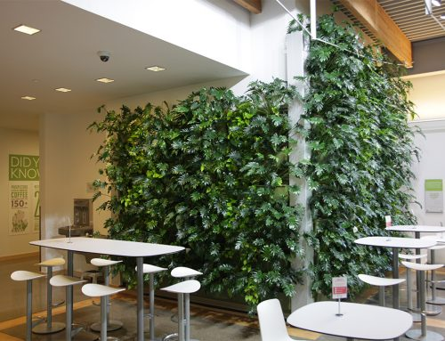 Downtown Market Indoor Living Wall with Pothos and Philodendron