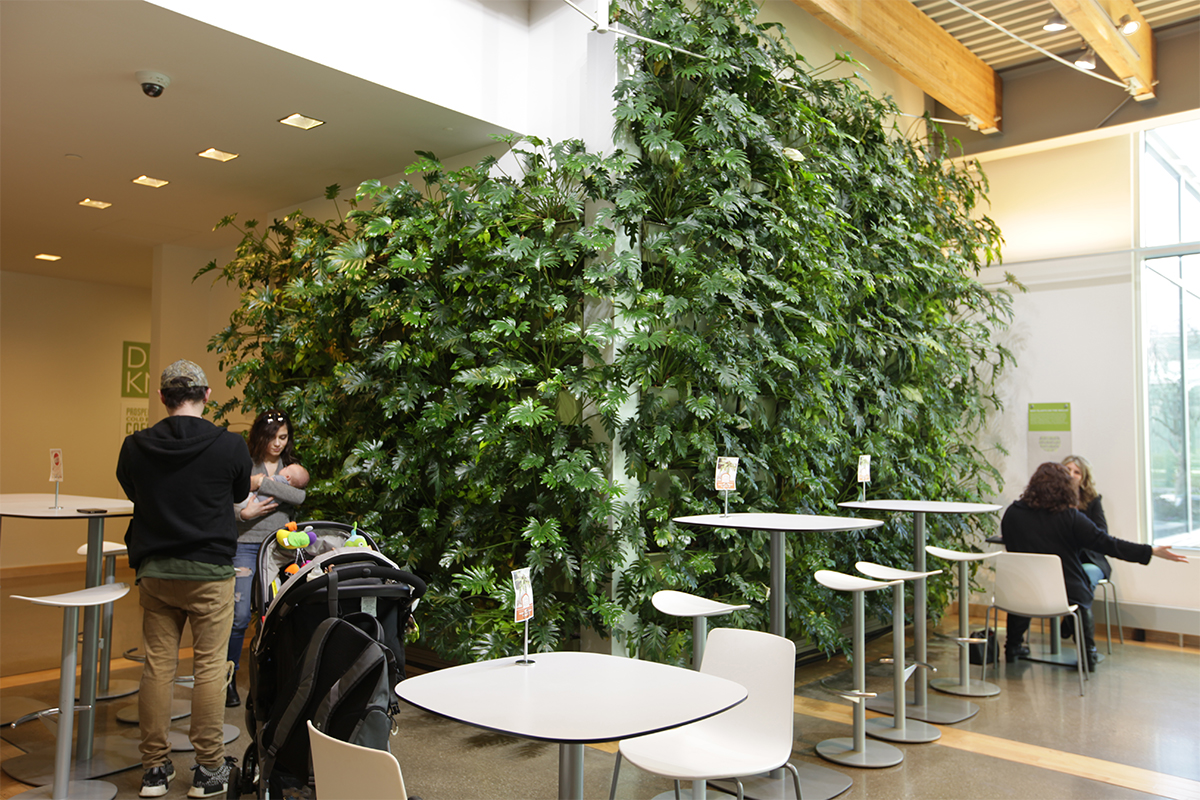 Families and friends connect in front of an indoor living wall filled with pothos and philodendron.
