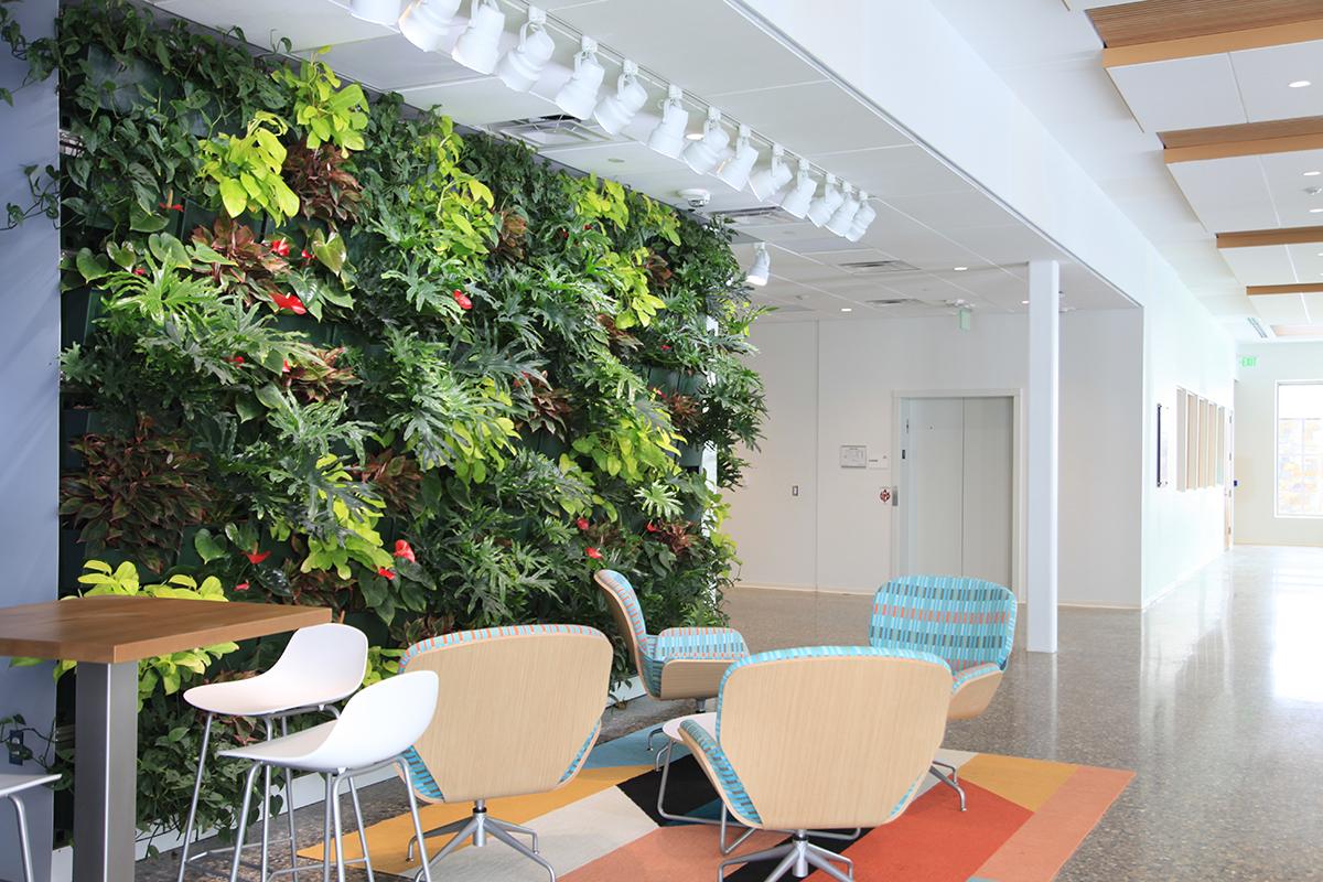 Cornerstone University's STEM Building Contains Living Walls