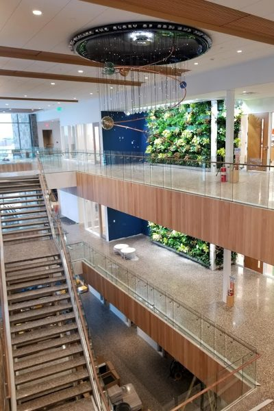 Cornerstone University's STEM Building indoor living walls on the day of planting.