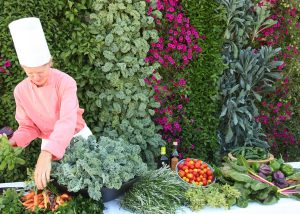 Culinary instructor arranges harvest from food wall.