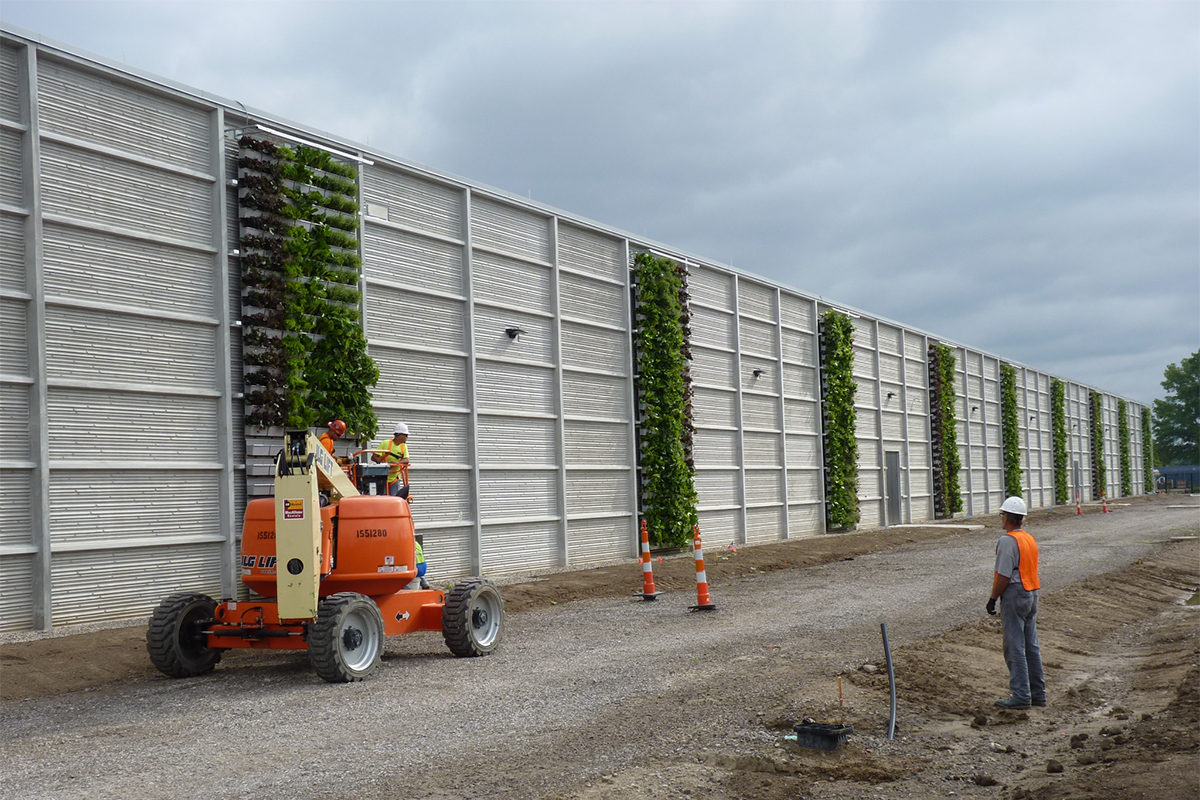 Installation team works to place perennial planter inserts into newly constructed living walls.