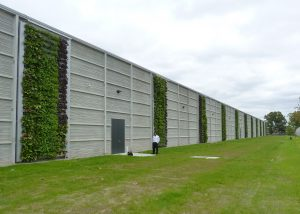 Newly planted living walls on a data center exterior.