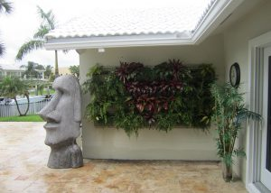 Newly planted residential living wall installation in south Florida.