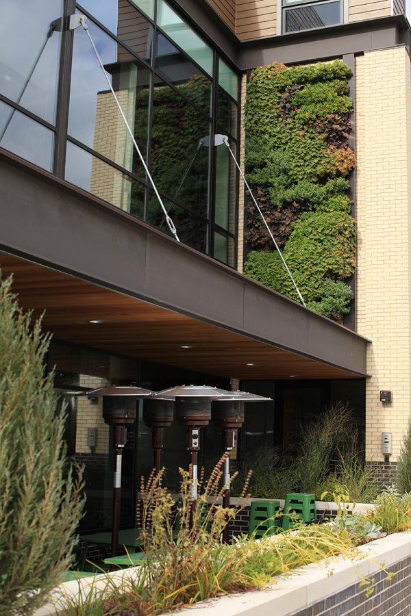 Forty Acres Soul Kitchen LiveWall Outdoor vertical garden.