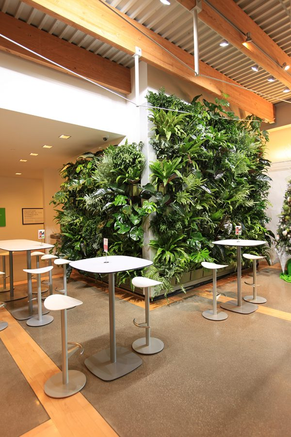 Tropical green wall planting at the Grand Rapids Downtown Market.